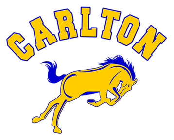 Carlton School Mustangs T-Shirt, Clothing, Mug