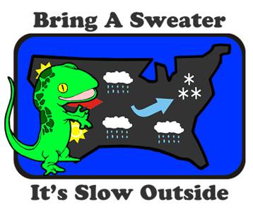 Sheldon Lizard Weather T-Shirt, Clothing, Mug