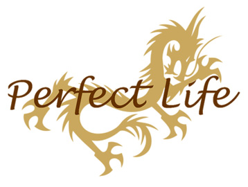 Perfect Life - Hangover 2 Chow's Boat T-Shirt, Clothing, Mug