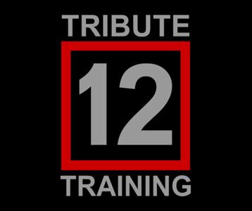 Tribute Training District 12 T-Shirt, Clothing, Mug