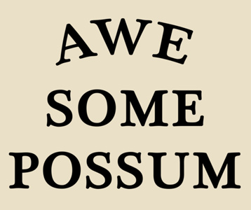 Awesome Possum T-Shirt, Clothing, Mug